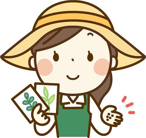 家庭菜園をして食費を削っているする女性